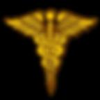 tn-army-medical-corps-caduceus-logo.png