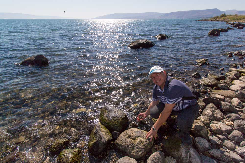 Orla do Kinneret