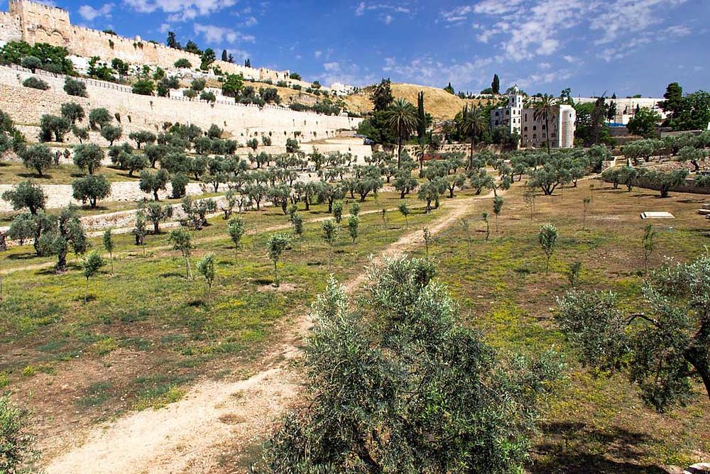 O vale de Kidron