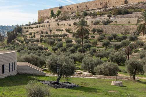 Kidron contornado pelo muro oriental