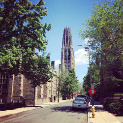 Yale-4.jpg