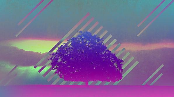 lonely-tree-TITLE-SLIDE-hd.jpg