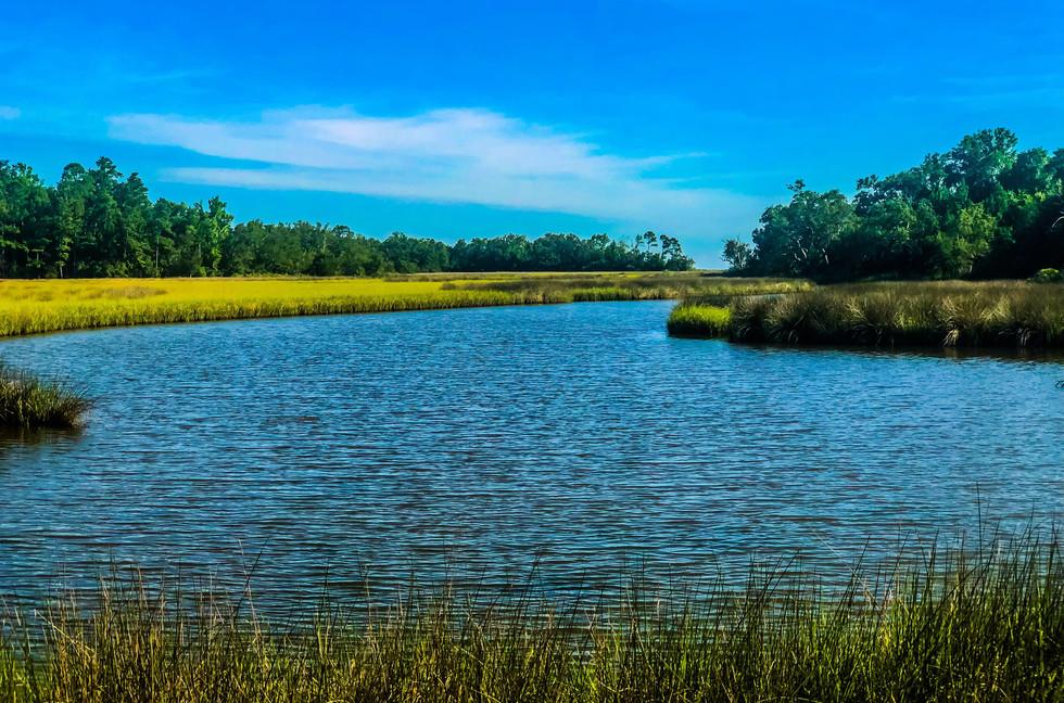 Beautiful South Mississippi Bayou shot,