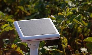In-Field Sensors