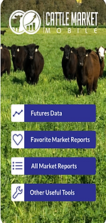 Cattle Market Mobile