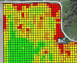 In-Season Monitoring & Mapping