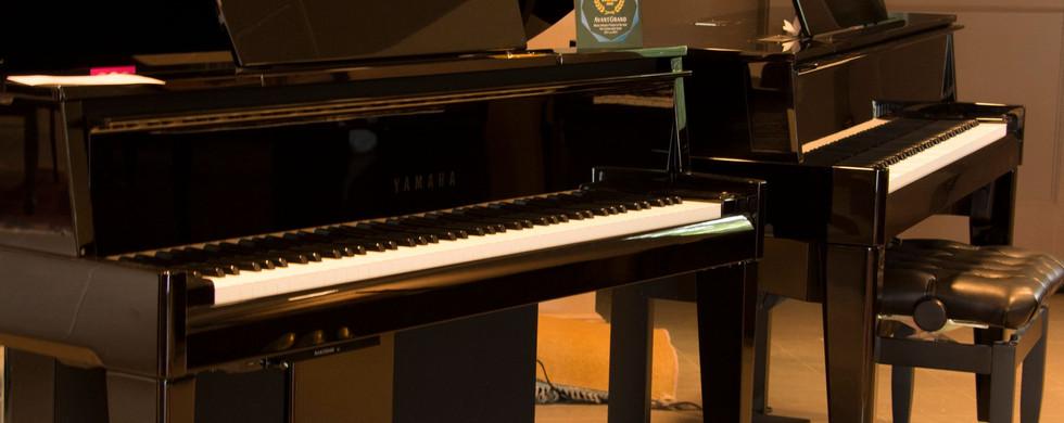 williams_piano_shop_060.jpeg