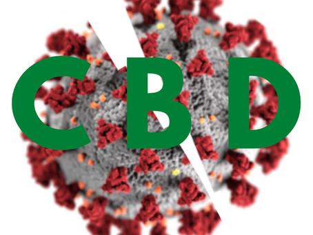 Can CBD help manage COVID-19 symptoms?
