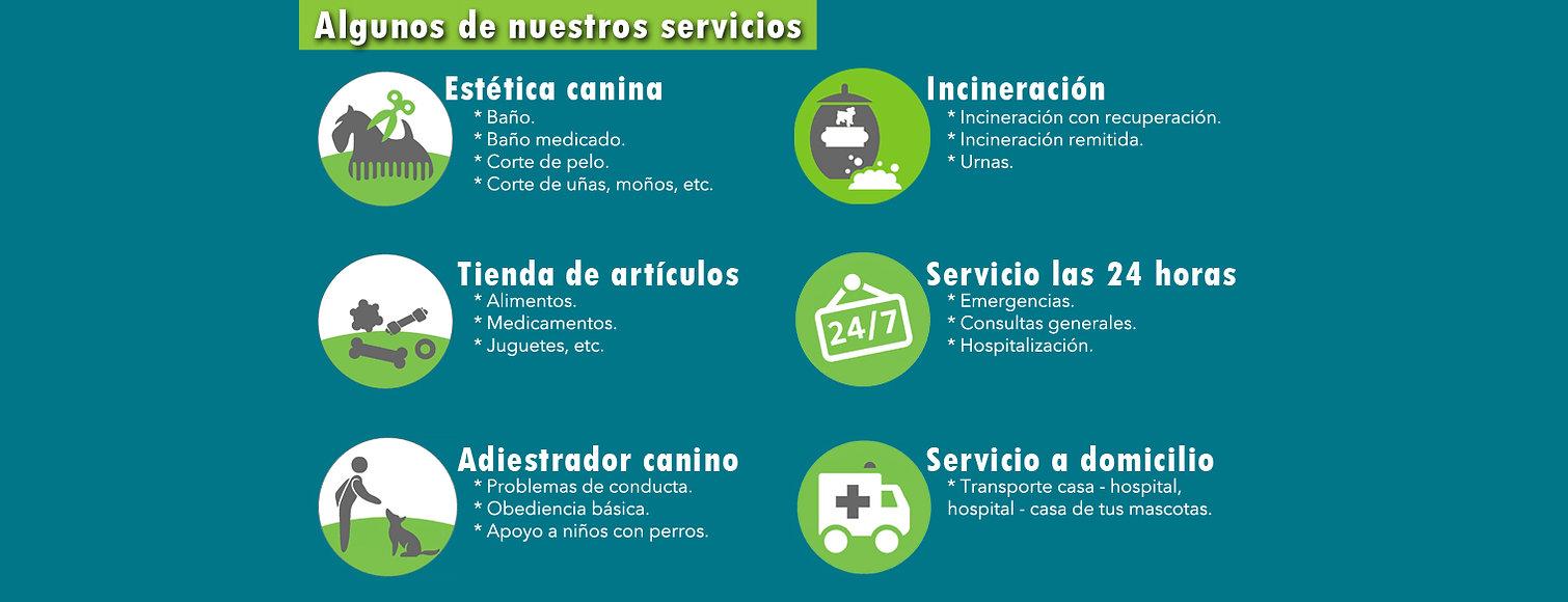 Algunos de nuestros servicios.jpg