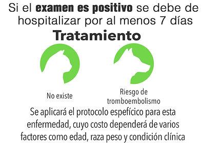 Examen positivo.jpg