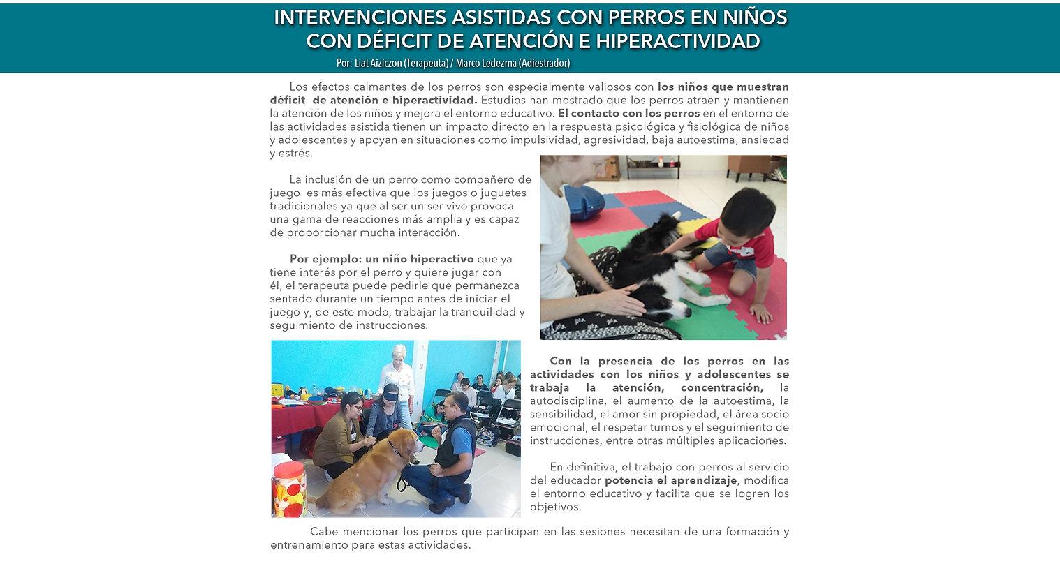 Articulo_niños_deficit_entrenamiento.jpg