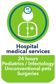 Hospital medical services.png