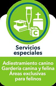 Servicios especiales_.png