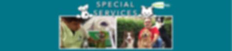 Encabezado Servicios especiales ingles.j