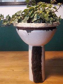 Ivy holder
