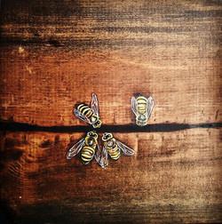 Bees in cracks #new #art #chalavie #savethebees #bees #wood #nature #losangeles #marvista #honey