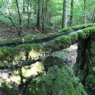 Grosses Aquädukt