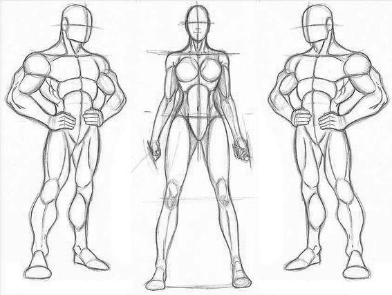 Anatomia Comic.jpg