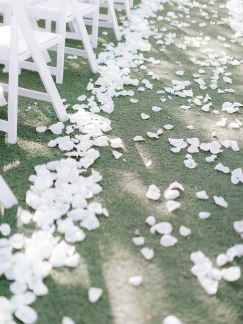 Springs-Preserve-Las-Vegas-Wedding-Photo