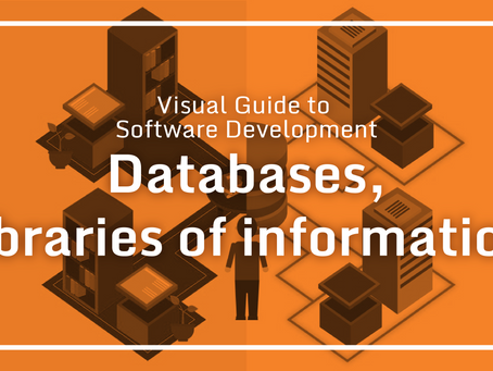 Visual Guide to Software Development – Databases, libraries of information