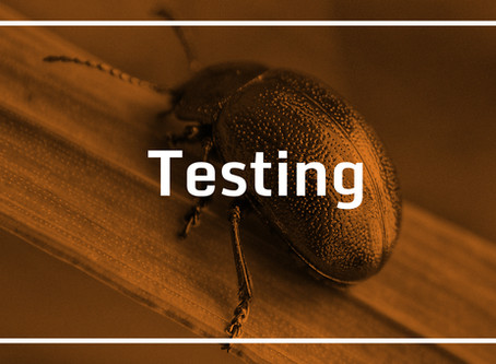 Software development simplified – Testing, bugs they are everywhere