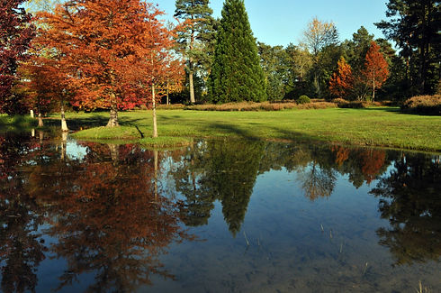 arboretum_photos_jean-françois_grossin_(16).jpg
