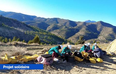 La coopérative Amagar dans le Haut Atlas, l'incroyable réussite de femmes berbères