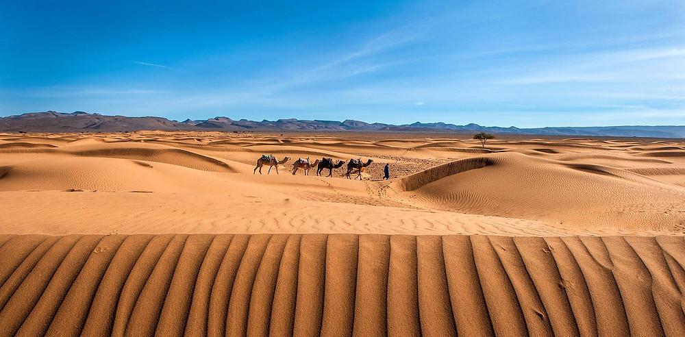 Les dunes du Sahara