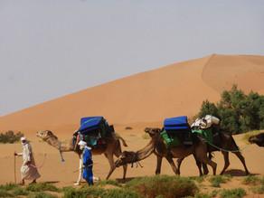 OCTOBRE - Le désert