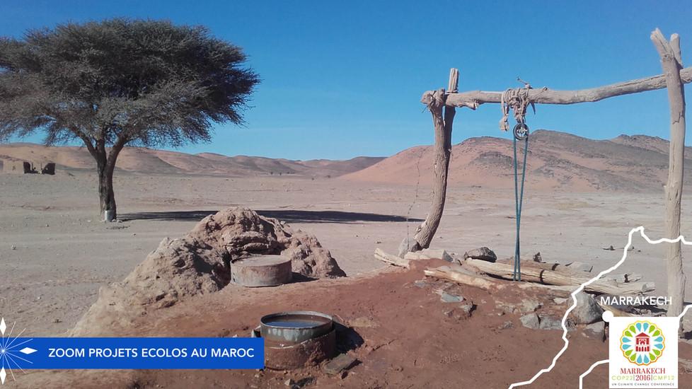 Cinq belles initiatives du Maroc pour protéger l'environnement
