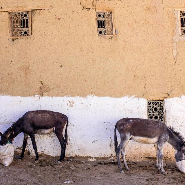Le 4x4 marocain !