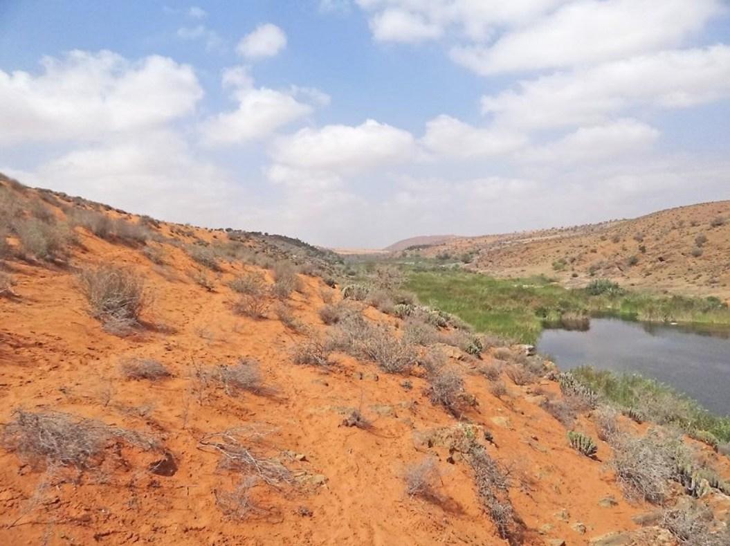 Parc Souss Massa Maroc