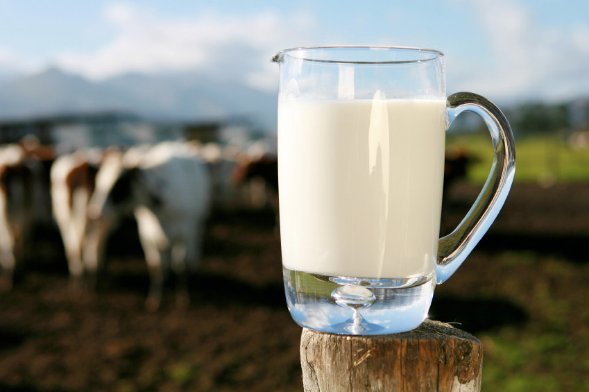 Mleko[1].jpg