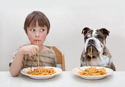 Voeding - Wat is het beste voor mijn hond?