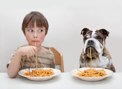 Food that dogs and cats cannot eat