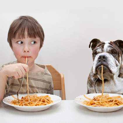 Do You Have a Picky Pet Eater?