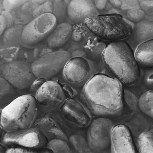 Piedras en el río. Concha de Artedo, Cudillero. 2008