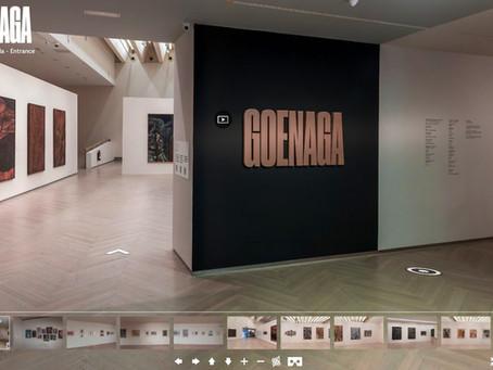 Visita Virtual Juan L. Goenaga