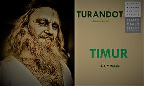 TIMUR.png