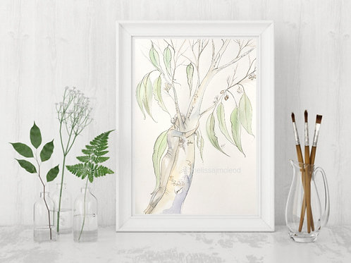 Scribbly Gum Woman -Signed Giclee Print