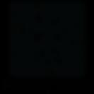 PrivacyTeam Logo