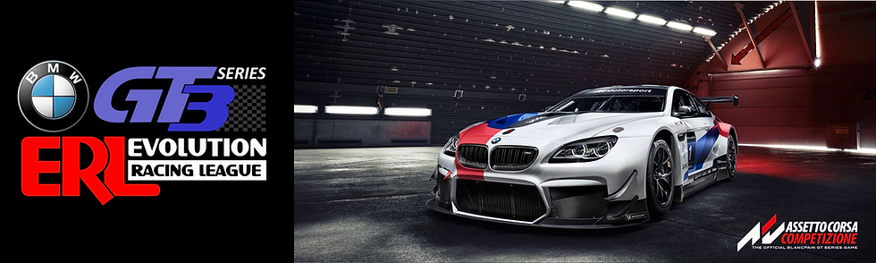 ERL-BMW GT3 Series4.png