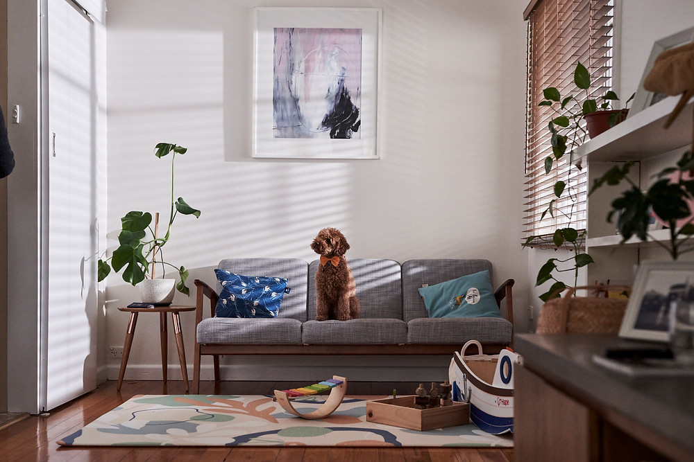 A dog sits on a couch in a living room wearing a bowtie.