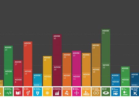 Our strength in numbers: maximising impacts with SDG 17