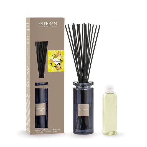 Esteban Paris Parfums Classic Terre d'Agrumes Diffuser (75ML)