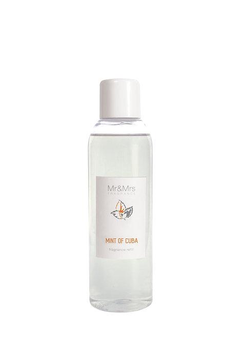 Blanc Refill - Mint Of Cuba (200ML)