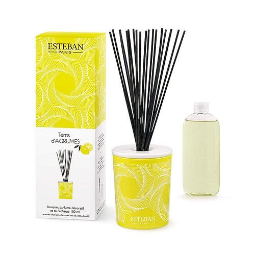 Esteban Paris Parfums Classic Terre d'Agrumes Diffuser (100ML)