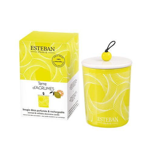Esteban Paris Parfums Classic Terre d'Agrumes Decorative Candle (170G)