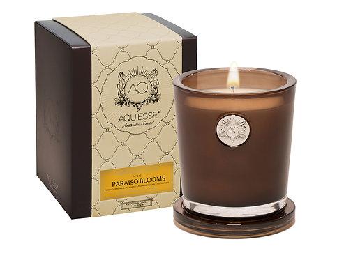 Aquiesse Portfolio Large Soy Boxed Scented Candle - Paraiso Blooms (11oz)