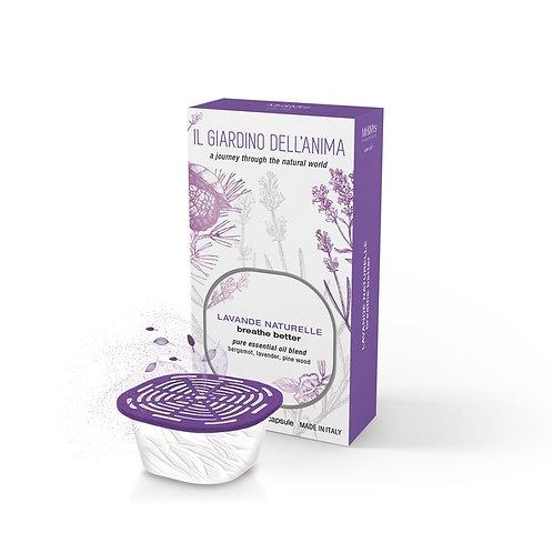 Natural Lavender Scented Capsule (Breathe Better)